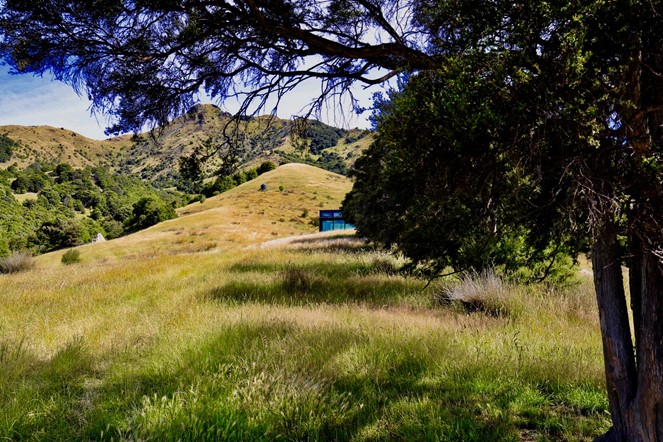 Manakau PurePod, first impressions - tucked away in your own slice of the beautiful NZ landscape