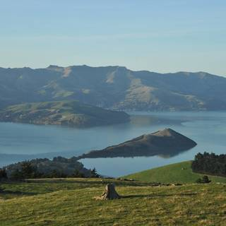 Banks Peninsula Harbour View from Port Hills