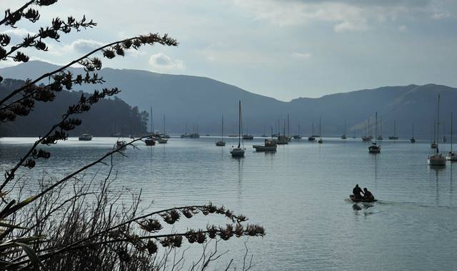 Akaroa Harbour with Boats