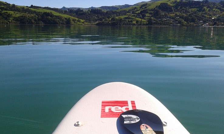Red SUP in Akaroa Harbour