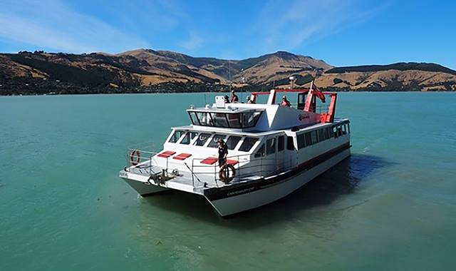 Black Cat Akaroa Boat