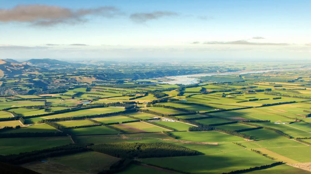 Mid Canterbury Plains and Braided River Photo Taken by Daniel Murray