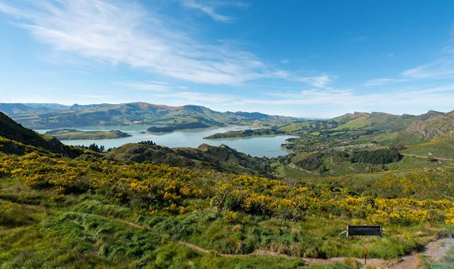Christchurch Port Hills Walking Track Overlooking Lyttelton Harbour